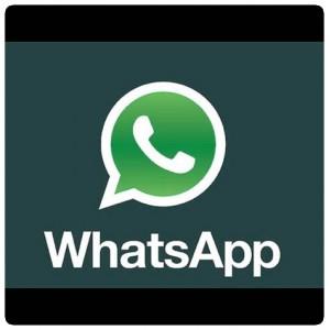 WhatsApp 安卓Apk 安装包 免费下载